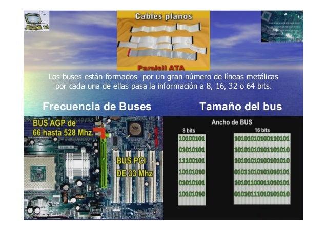 3131 Frecuencia de Buses Tamaño del bus Los buses están formados por un gran número de líneas metálicas por cada una de el...