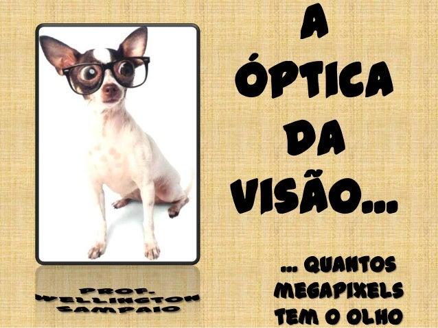 A Óptica da Visão... ... quantos megapixels tem o olho