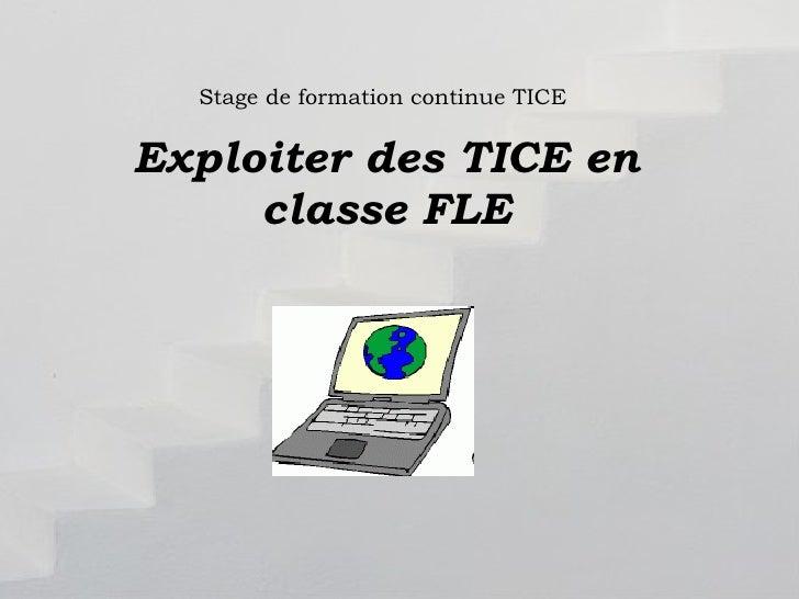 Stage de formation continue TICE Exploiter des TICE en classe FLE Exploitation des TICE en classe FLE Formateur Vera  Paşca