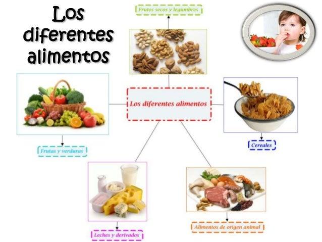 Los diferentes alimentos