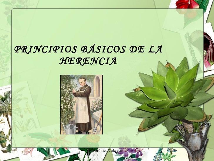 PRINCIPIOS BÁSICOS DE LA HERENCIA Verónica Cabrera