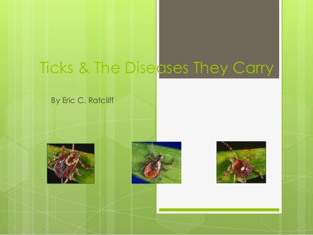 Ticks & The Diseases They Carry By Eric C. Ratcliff