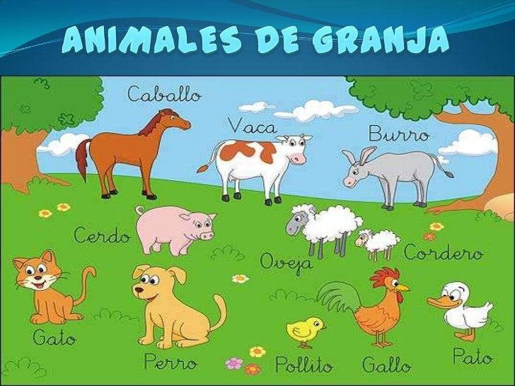 LOS ANIMALES DE LA GRANJA  SON LOS QUE VIVEN EN ELCAMPO, FUERA DE LA CIUDAD,   Y ESTAN AL CUIDADO DEPERSONAS COMO LO SON L...