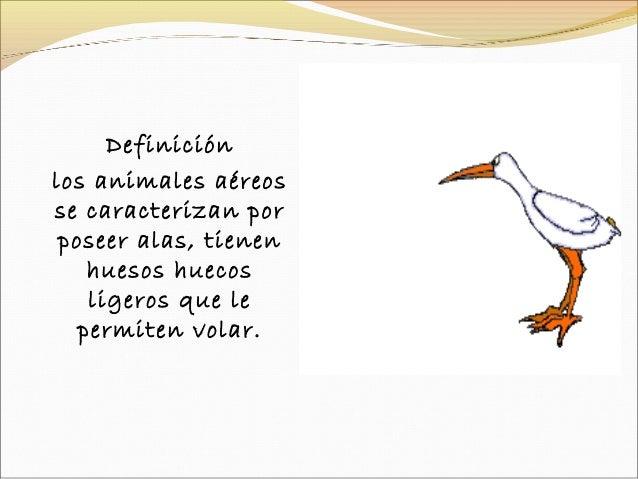 Tic Presentacion Animales Aereos