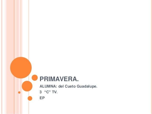 """PRIMAVERA. ALUMNA: del Cueto Guadalupe. 3 """"C"""" TV. EP"""