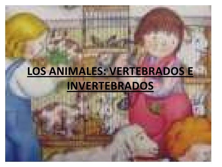 LOS ANIMALES: VERTEBRADOS E       INVERTEBRADOS