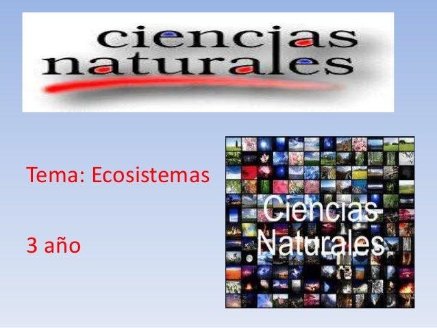 Tema: Ecosistemas3 año