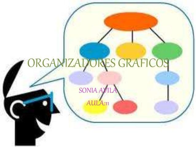 pensamiento en red sonia abadi pdf