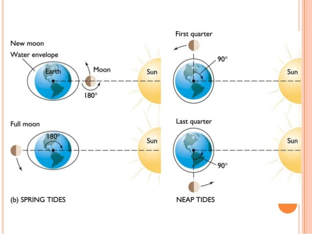 How Gravity, the Moon & the Sun Influence Tides - Study.com