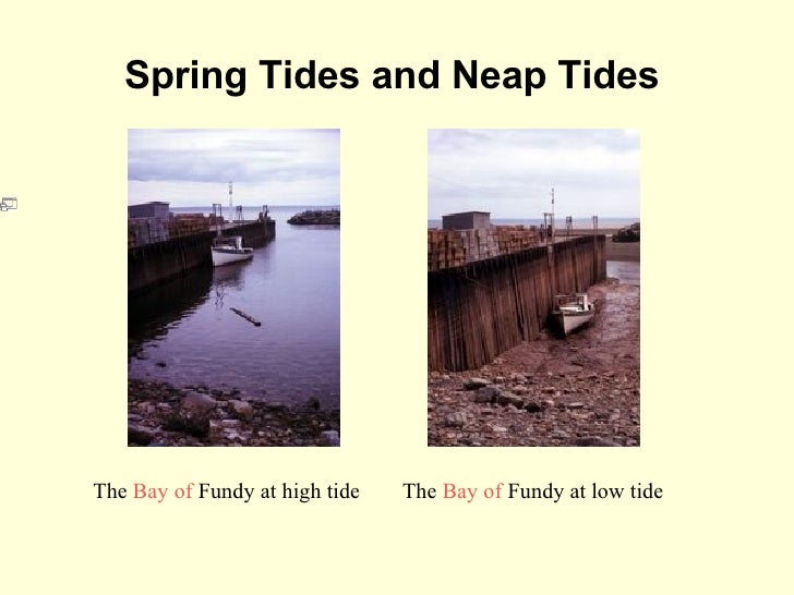 Tides waves an artistsconception of neap tide 10 sciox Image collections