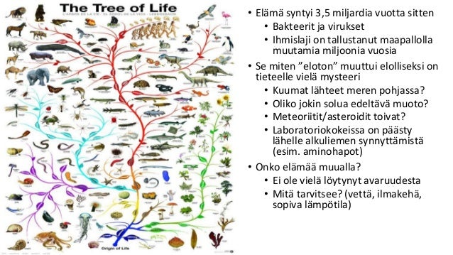 • Elämä syntyi 3,5 miljardia vuotta sitten • Bakteerit ja virukset • Ihmislaji on tallustanut maapallolla muutamia miljoon...