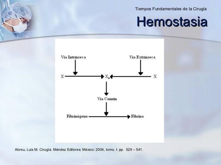 Hemostasia Abreu, Luis M. Cirugía. Méndez Editores ; México: 2004, tomo. I: pp.  529 – 541. Tiempos Fundamentales de la Ci...