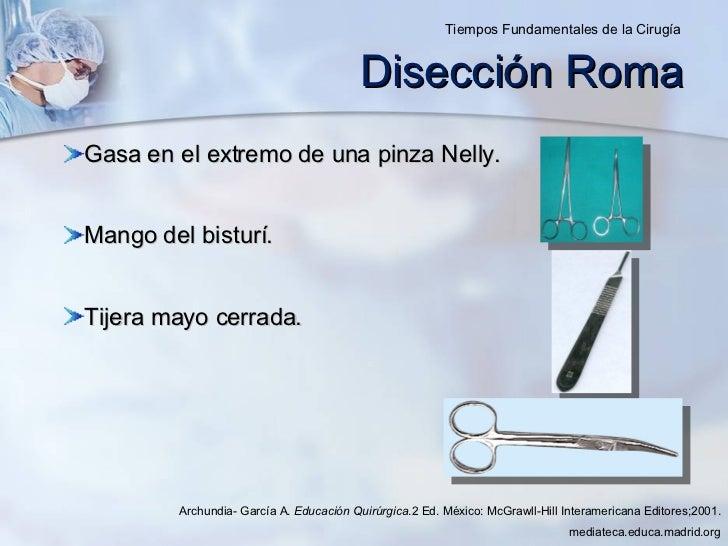 Disección Roma <ul><li>Gasa en el extremo de una pinza Nelly. </li></ul><ul><li>Mango del bisturí. </li></ul><ul><li>Tijer...