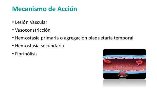 Cascada y tiempos de coagulación Slide 3