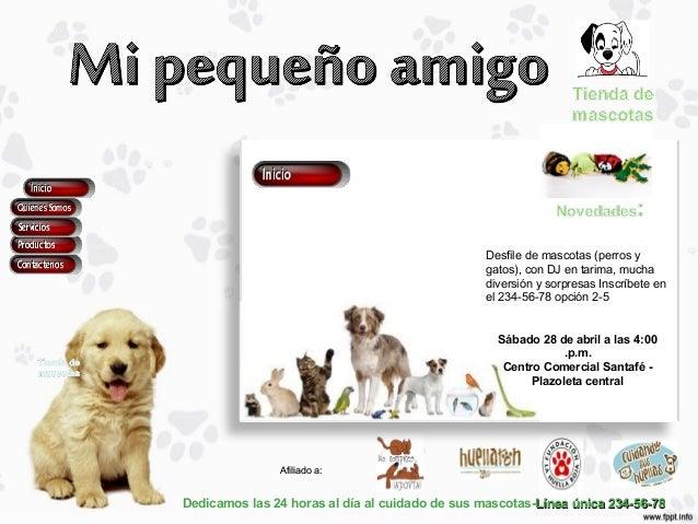 Dedicamos las 24 horas al día al cuidado de sus mascotas-Línea única 234-56-78Línea única 234-56-78Afiliado a:Afiliado a:D...