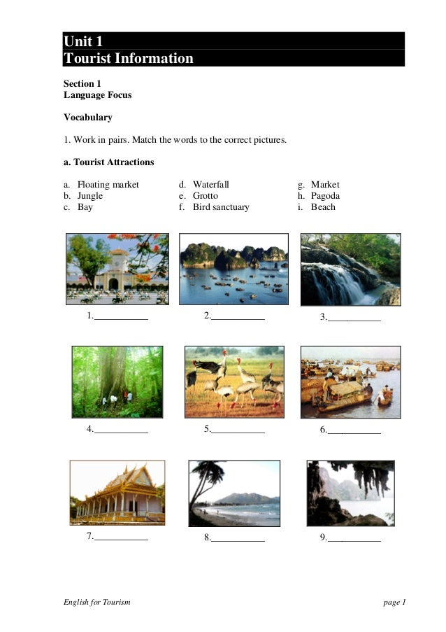 Unit 1Tourist InformationSection 1Language FocusVocabulary1. Work in pairs. Match the words to the correct pictures.a. Tou...