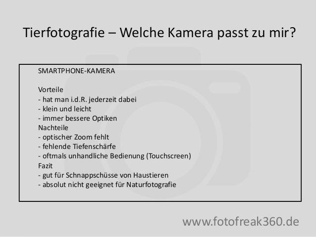 Tierfotografie – Welche Kamera passt zu mir? www.fotofreak360.de SMARTPHONE-KAMERA Vorteile - hat man i.d.R. jederzeit dab...