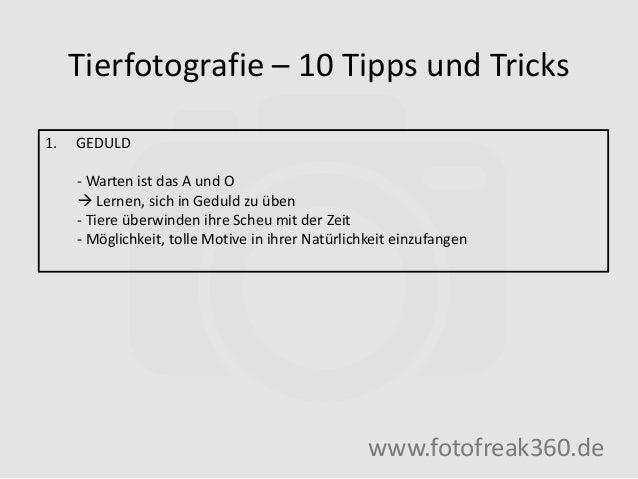 Tierfotografie – 10 Tipps und Tricks www.fotofreak360.de 1. GEDULD - Warten ist das A und O  Lernen, sich in Geduld zu üb...