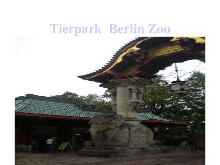 Tierpark   Berlin Zoo
