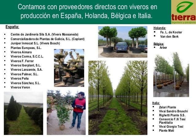 Tierra ingenier a y paisajismo s l madrid espa a presentacio - Viveros pena madrid ...