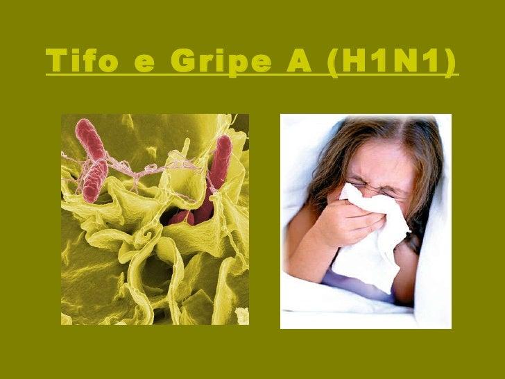 Tifo e Gripe A (H1N1)
