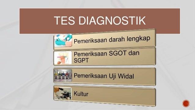 Apa itu tifus (demam tifoid)?