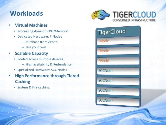Tiger Cloud Details