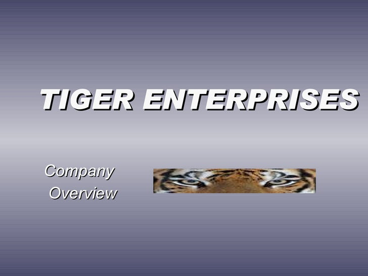 TIGER ENTERPRISES  Company Overview