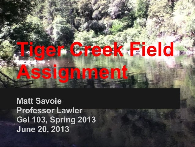 Tiger Creek FieldAssignmentMatt SavoieProfessor LawlerGel 103, Spring 2013June 20, 2013