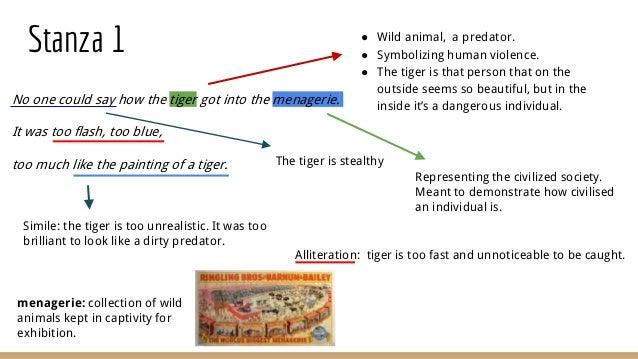 the tyger interpretation