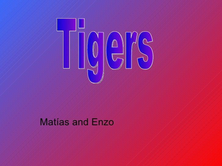 Matías and Enzo  Tigers