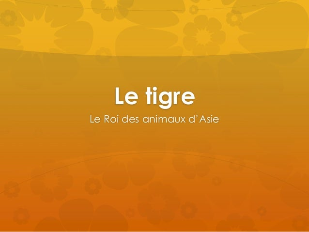 Le tigre Le Roi des animaux d'Asie