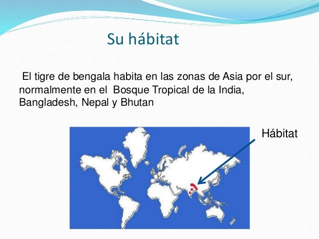 Tigre de bengala for Bengala asia