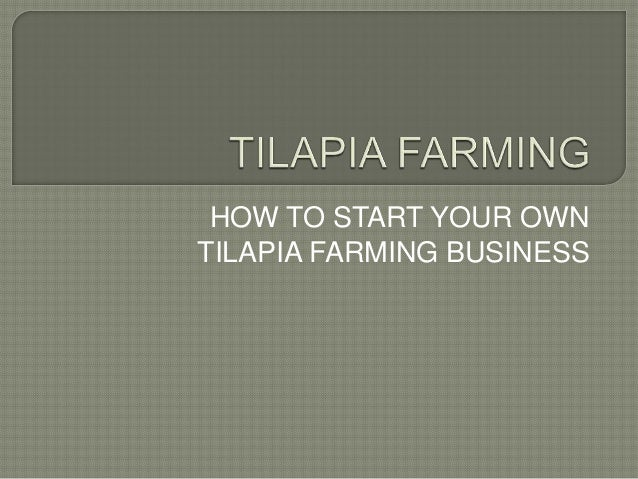 tilapia farming guide tilapia farming guide for farmers rh slideshare net tilapia farming guidelines tilapia farming guide download