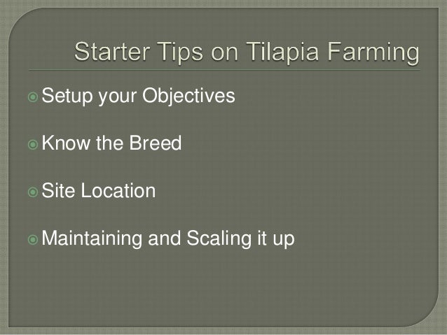 tilapia farming guide tilapia farming guide for farmers rh slideshare net tilapia farming guide in india tilapia farming guidelines