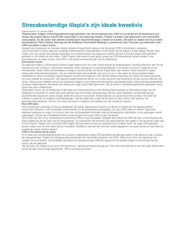 Stressbestendige tilapias zijn ideale kweekvisDatum bericht: 21 januari 2005Tilapiavissen krijgen verbazingwekkend hoge ge...