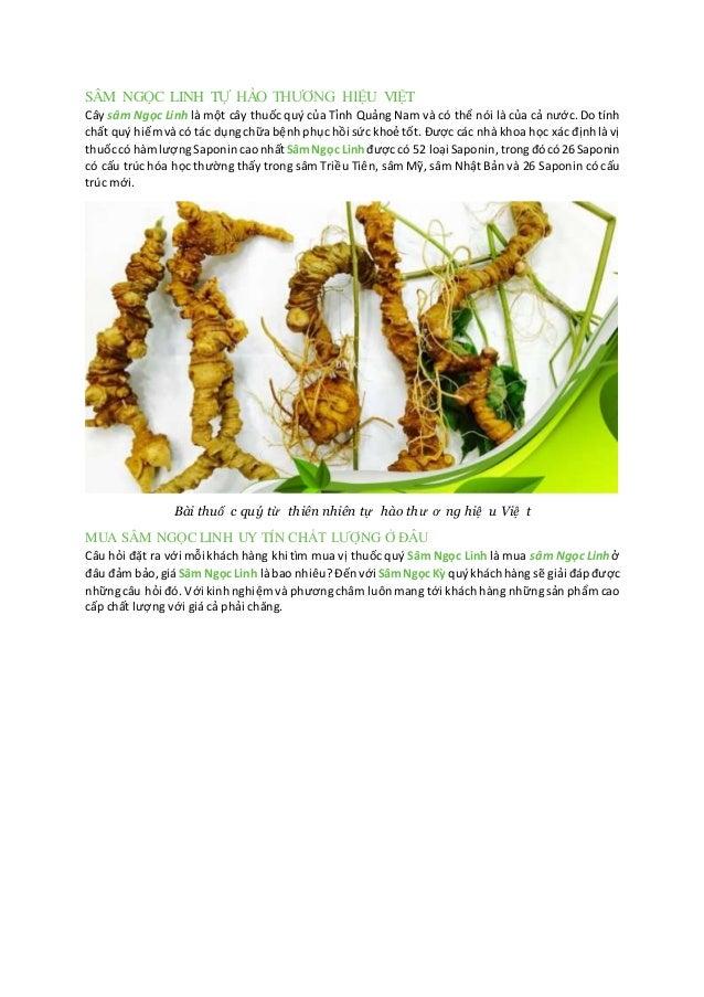 SÂM NGỌC LINH TỰ HÀO THƯƠNG HIỆU VIỆT Cây sâm Ngọc Linh là một cây thuốc quý của Tỉnh Quảng Nam và có thể nói là của cả nư...