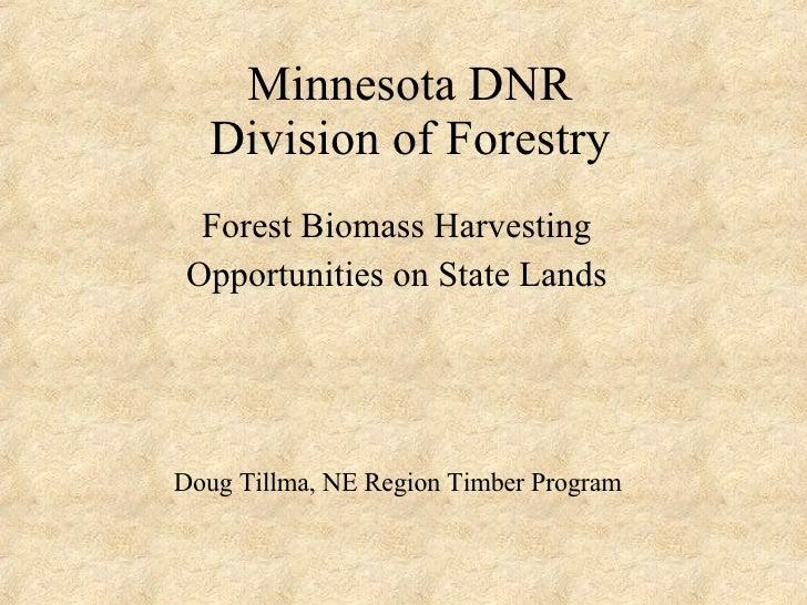 Minnesota DNR Division of Forestry Forest Biomass Harvesting Opportunities on State Lands Doug Tillma, NE Region Timber Pr...