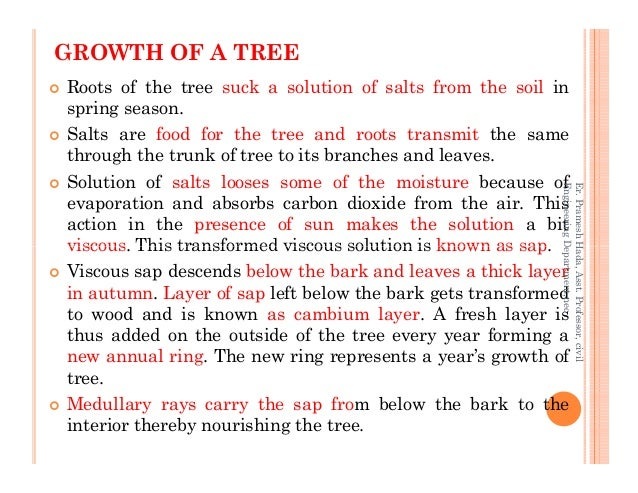 GROWTH OF A TREE Roots of the tree suck a solution of salts from the soil in spring season. Salts are food for the tree an...