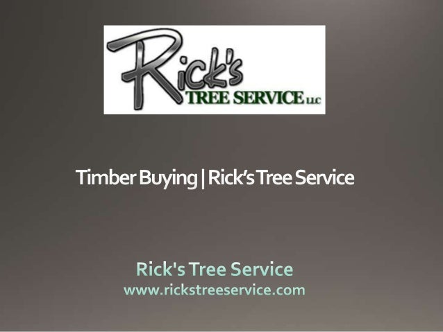 Timber Buying | Rick's Tree Service