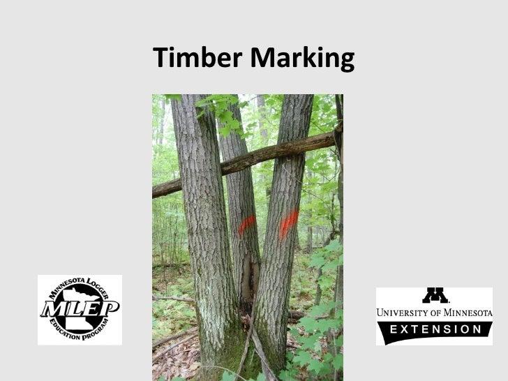 Timber Marking