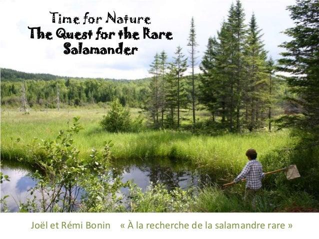 Time for NatureThe Quest for the Rare     SalamanderJoël et Rémi Bonin « À la recherche de la salamandre rare »