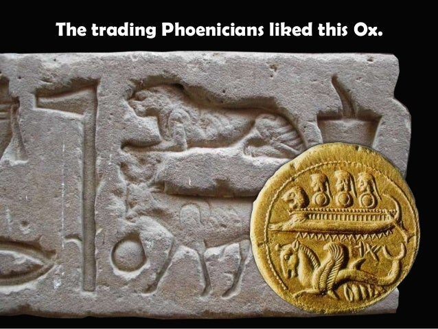 """The Phoenician word for Ox was """"Alf""""."""
