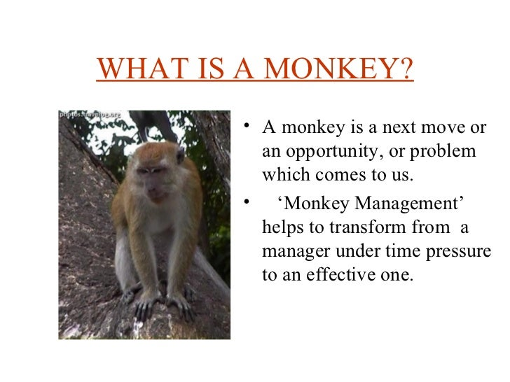 WHAT IS A MONKEY? <ul><li>A monkey is a next move or an opportunity, or problem which comes to us. </li></ul><ul><li>' Mon...