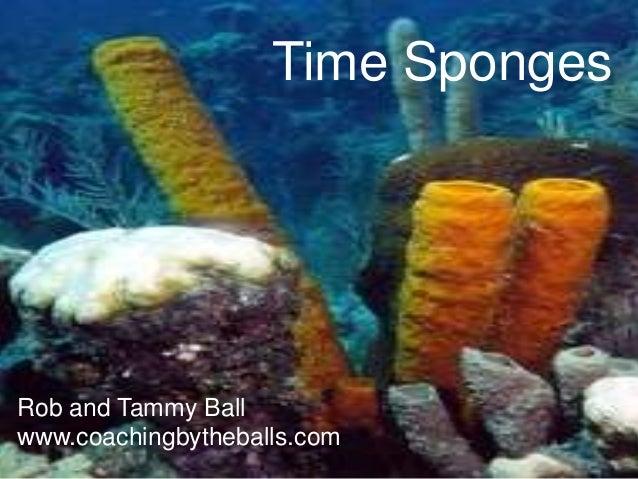 Time SpongesRob and Tammy Ballwww.coachingbytheballs.com