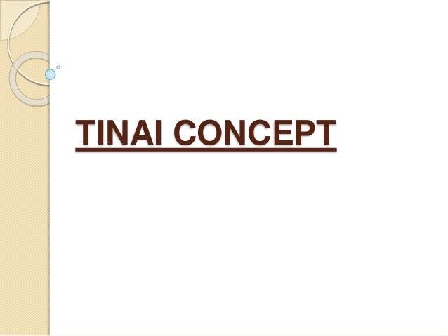 Tinai concept Slide 2