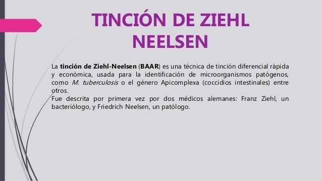 TINCION ZIEHL NEELSEN FUNDAMENTO EBOOK