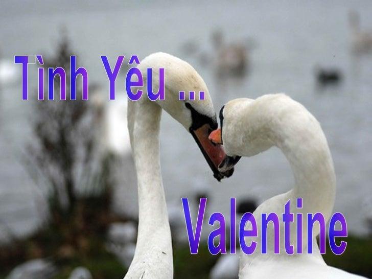 Tình Yêu ... Valentine