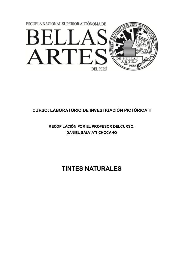 CURSO: LABORATORIO DE INVESTIGACIÓN PICTÓRICA II      RECOPILACIÓN POR EL PROFESOR DELCURSO:             DANIEL SALVIATI C...