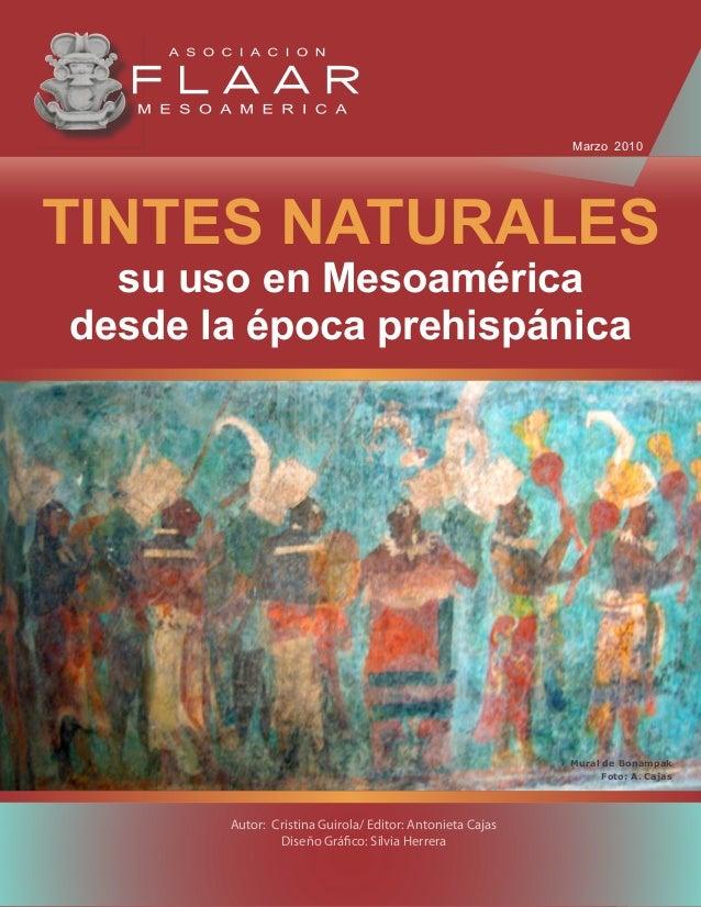 TINTES NATURALES                                                    su uso en Mesoamérica                                 ...